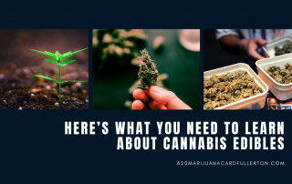 Here's What You Need To Learn About Cannabis Edibles
